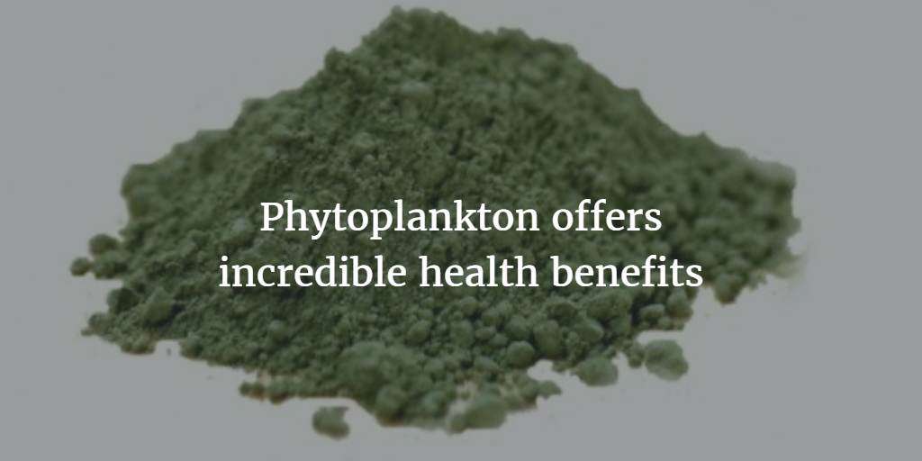 Phytoplankton offers incredible health benefits